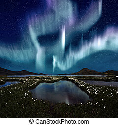 Aurora Borealis - The Northern Light over the marsh...