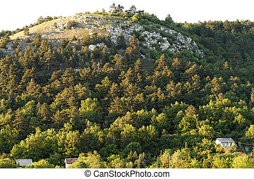 Hilly area - Photo of a hilly landscape in the middle of...