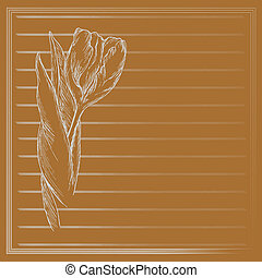Graphic flower, sketch of tulip on orange background Vector...