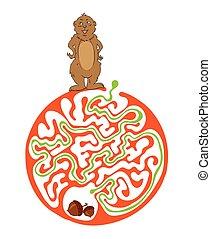labirinto, puzzle, per, bambini, con, marmotta, e, Nut.,...
