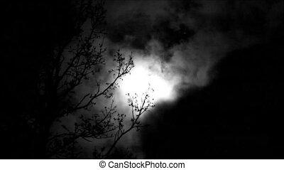 Moon Timelapse