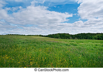 Russian spring meadow - Russian spring meadow with...