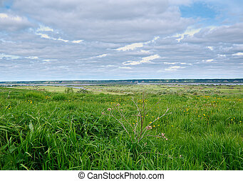 View of Northern Dvina River Arkhangelsk region Russian...