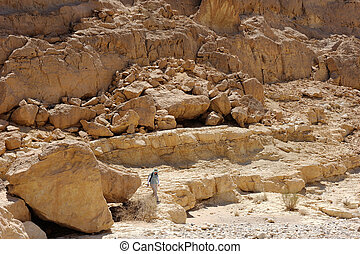 Makhtesh Ramon - Stones of Makhtesh Ramon, unique crater in...