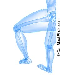 leg x-ray illustration - 3d rendered illustration of...