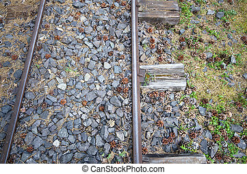 Old narrow-gauge railways detail from above