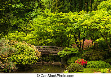 Wooden bridge in a Japanese garden - Wooden bridge over a...