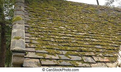Old mossy roof and millstone - Old building mossy slate roof...
