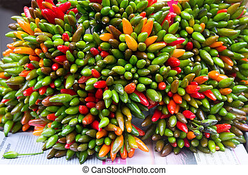 Bunch of green and red peppers chili at market