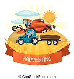 Combine harvester and tractor on wheat field Agricultural...