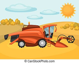 Combine harvester on wheat field Agricultural illustration...