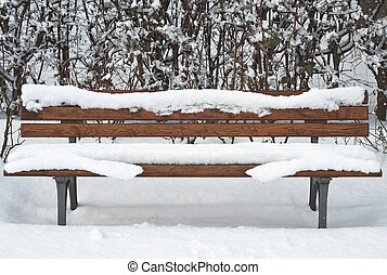 Bench in the Snow - Lonely Bench and Hedge after a Snowstorm