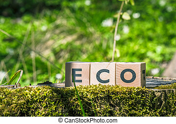 Eco sign in a green forest