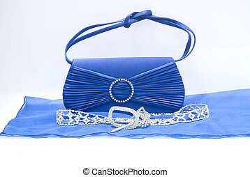 The clutch bag - The elegance blue women clutch bag isolated...