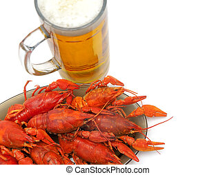 crayfish and beer closeup on a white background horizontal...