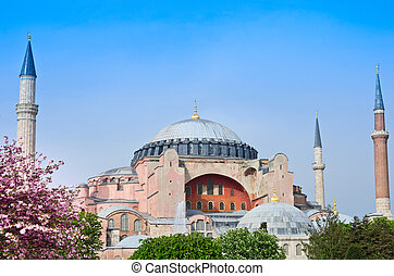 View of Hagia Sofia or Ayasofya , Istanbul, Turkey