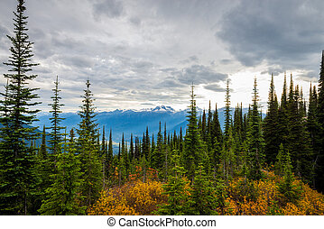 Canadian Mountains Landscape