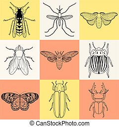 insect icons set. Cicada and stag beetle, firefly and wasp,...