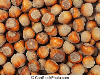 Hazelnuts - Set of hazelnuts, can be used as a background