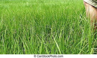 Man crossing grass field slow motion