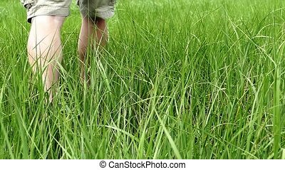 Man walks inside grass slow motion