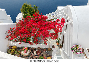 Fira. Traditional architecture of Santorini. - Traditional...