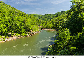 View of Cheat River from Jenkinsburg Bridge - View up Cheat...