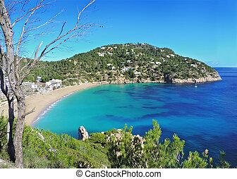Beach Cala San Vicente