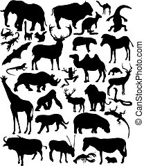 Wild Animals - Set of vector illustrated wild animals...