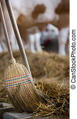 Broom and shovel for cattle dung - Broom and shovel for...
