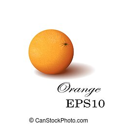 Orange on a white background - Orange isolated, Vector...