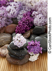 Rock pile with flowers