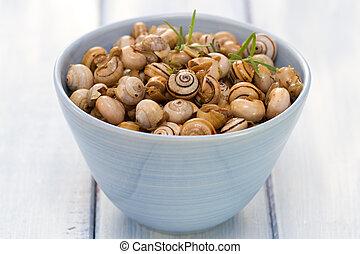 snails in blue bowl on blue background