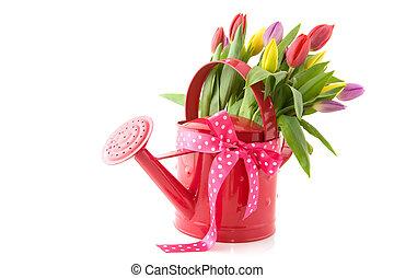 上水, 花, 罐頭