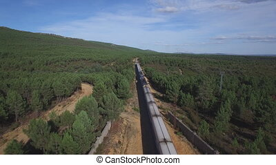 Top view of train in the wild - Aerial view of train over...