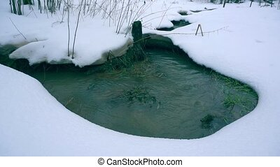 Beautiful winter creek in snowy forest