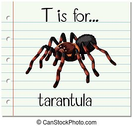 Flashcard letter T is for tarantula illustration