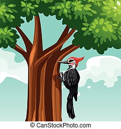Woodpecker on the tree illustration