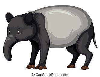 Tapir on white background illustration