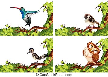 Different wild birds on the branch illustration