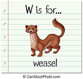 Flashcard letter W is for weasel illustration
