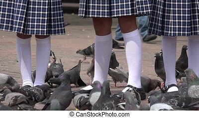 School Girls Feeding Pigeons