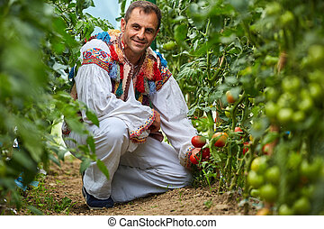 Romanian farmer in traditional costume in his greenhouse -...