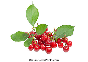Pile of a sweet cherries and branch with leaves