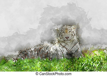 Watercolor image of white tiger.