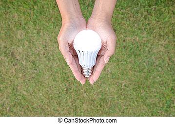 領導,  -, 點燃, 人類, 燈泡, 保留, 技術