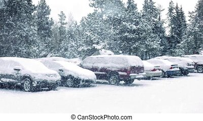 Cars In Parking Lot In Snowstorm - Car parked by trees in...