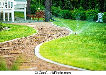 Grass Field Sprinklers - Backyard Residential Garden Grass...