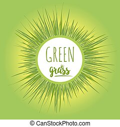 Realistic green grass lawn - Realistic grass lawn isolated...