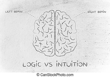 left and right brain illustration, caption logic vs intuition